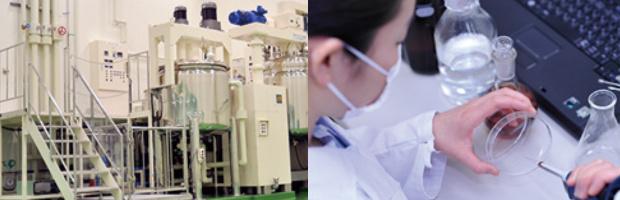 メディプラスゲル 製造過程